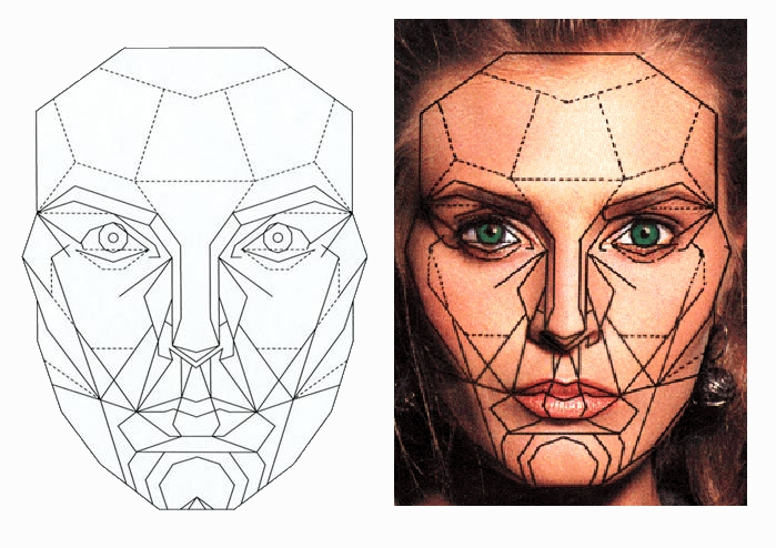 How To Measure Facial Symmetry 53